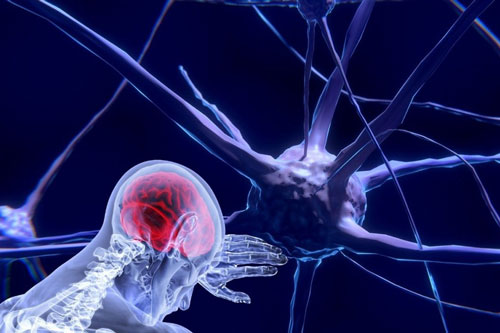 Fisioteràpia neurològica